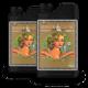 Удобрение Advanced Nutrients pH Perfect Sensi Coco Bloom A&B